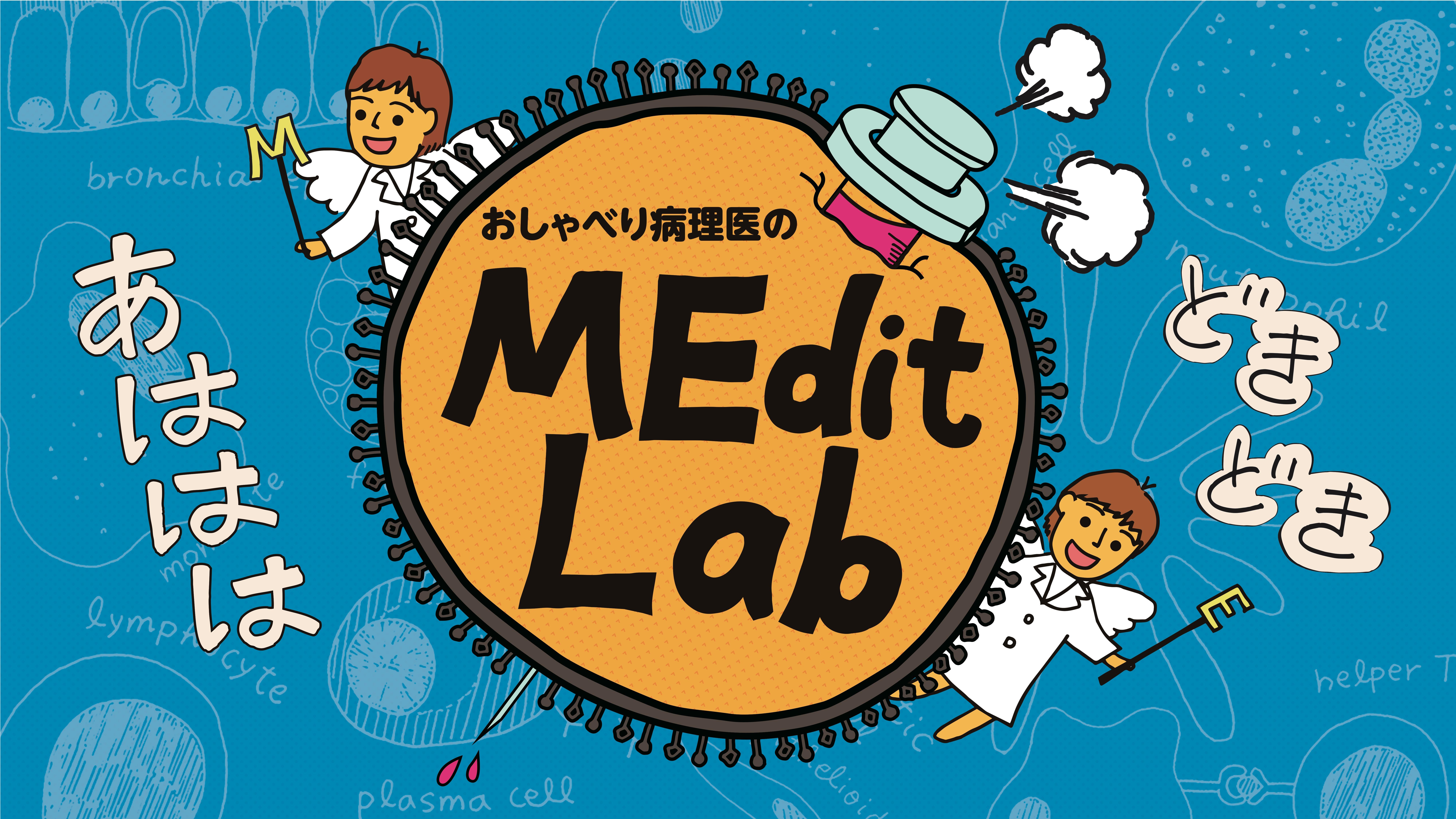 MEdit Lab title